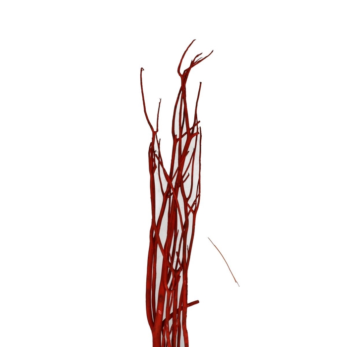 <h4>Dried articles Mitsumata branches 100cm x3</h4>