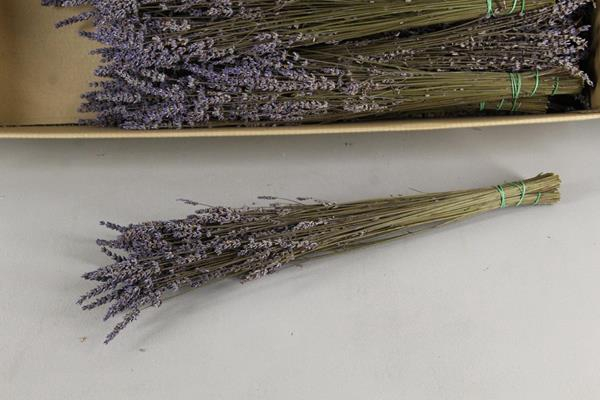 <h4>Df Lavendel Bs 85g</h4>