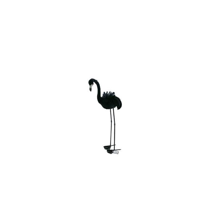 <h4>Fig. Black Feather Flamingo 70</h4>