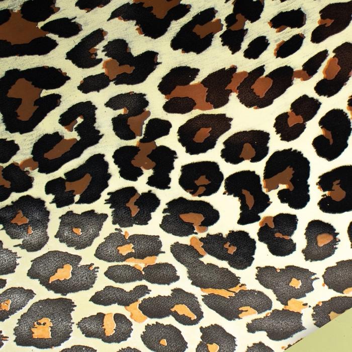 <h4>Folie Rol 60cm  50m Leopard</h4>