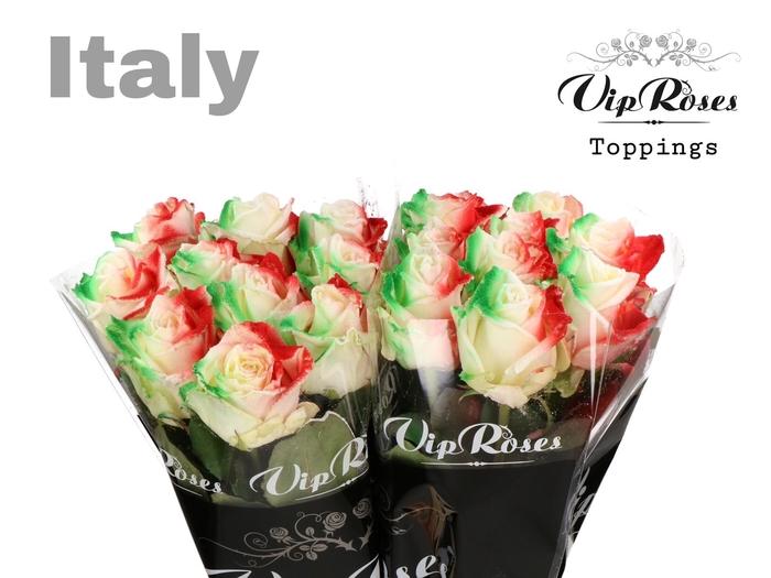 <h4>R GR FLAG ITALY</h4>