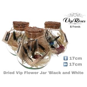 DRIED VIP FLOWER JAR BL & WH
