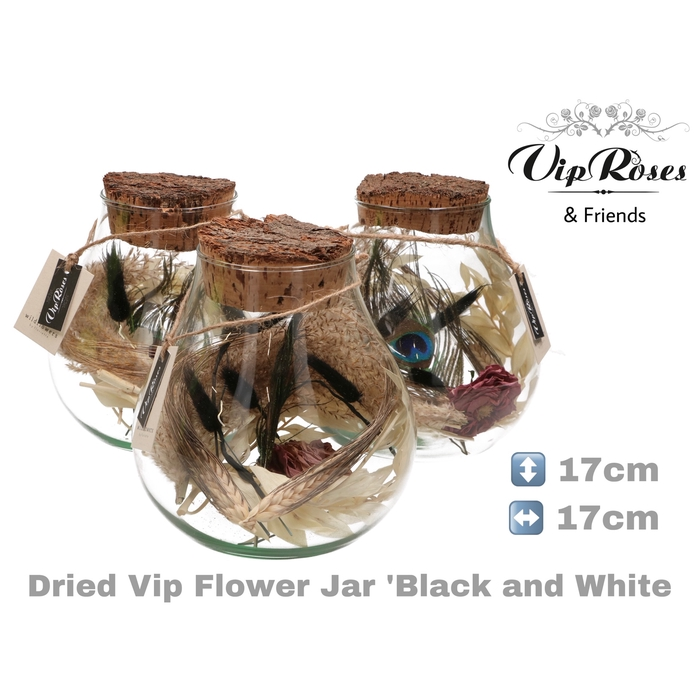 <h4>DRIED VIP FLOWER JAR BL & WH</h4>