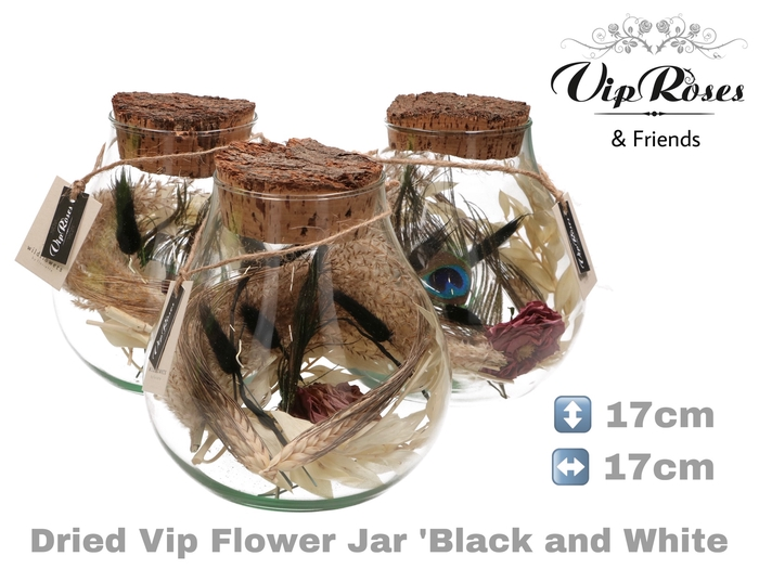 DRIED VIP FLOWER JAR BLACK & WHITE