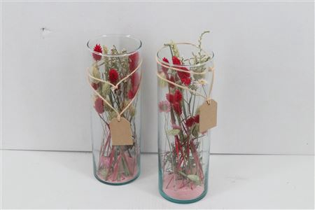 <h4>Arr. Dried Flowers Glass Cilinder Lang Roze</h4>