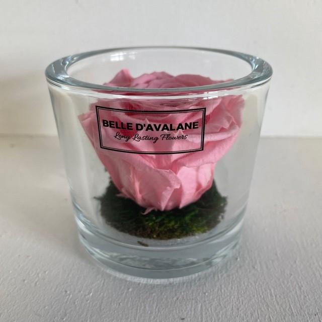 <h4>Cilinder d9x8h roze roos</h4>