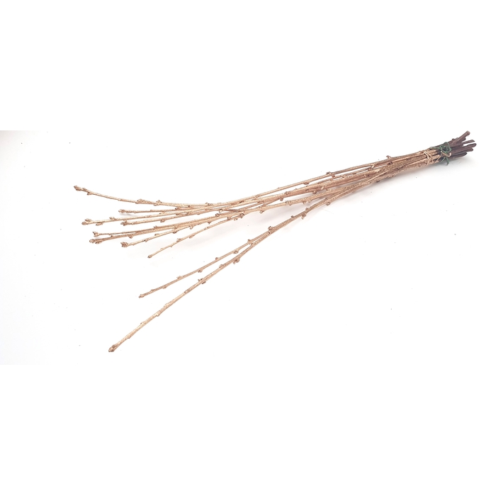 <h4>Avium branches lgt 40cm 10 stems per bunch Antique</h4>