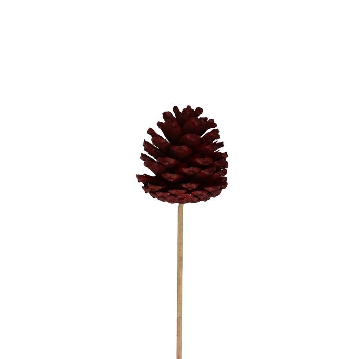 <h4>Christmas sticks 50cm Pinecone 6cm</h4>