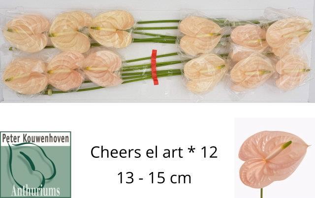<h4>ANTH A CHEERS EL ART</h4>