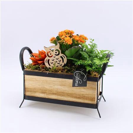 <h4>Hecr-2105or Autumn Essentials</h4>