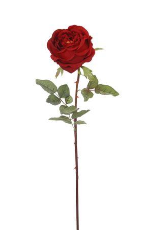 <h4>Flower Rose6 h70 red/green</h4>