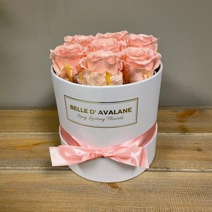 Box rd 15cm wit-roze