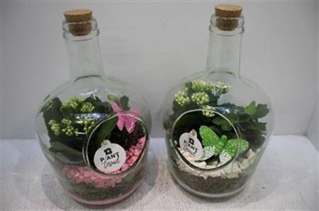 <h4>3510 Glasfles + Kurkdop</h4>