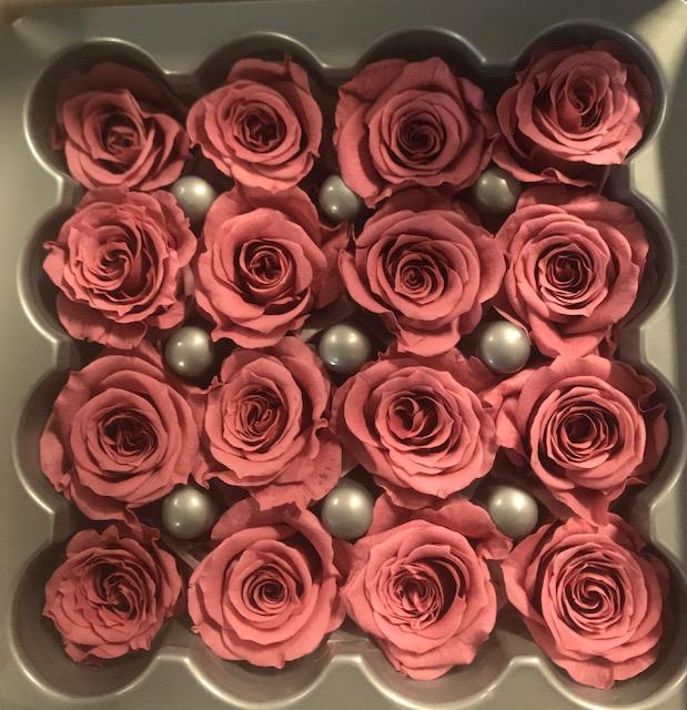 <h4>Roos princess cherry blossom</h4>