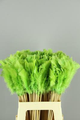 <h4>Stick Feather Apple Green</h4>