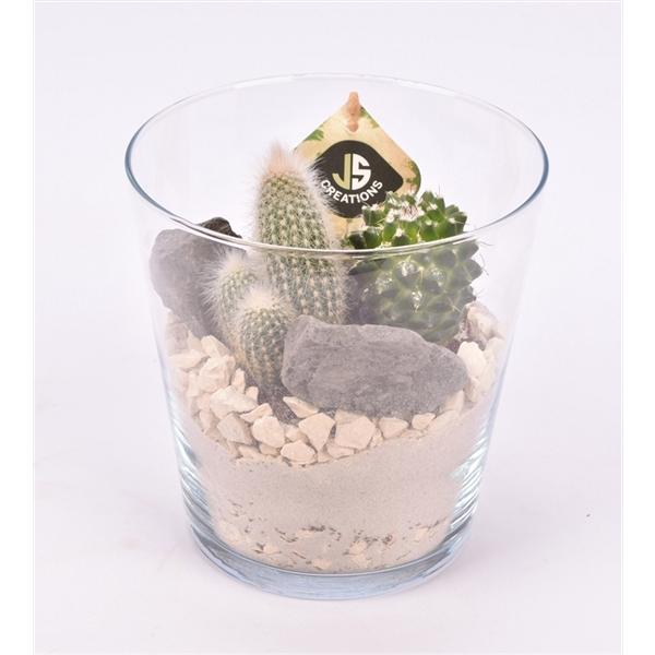<h4>Glas pot 16 cm</h4>
