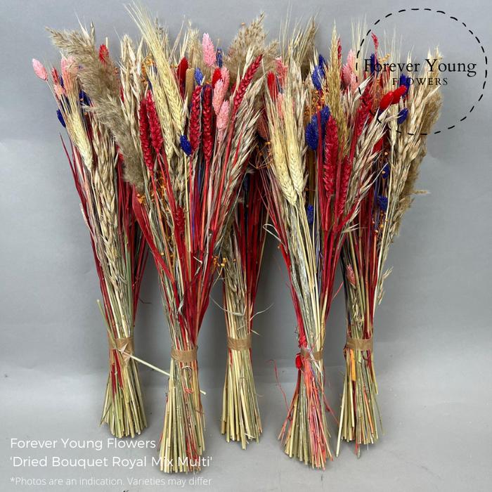 <h4>Dried Bouquet Royal Multi</h4>
