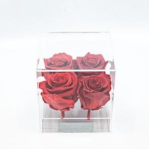 Plexi 12.5cm rode rozen