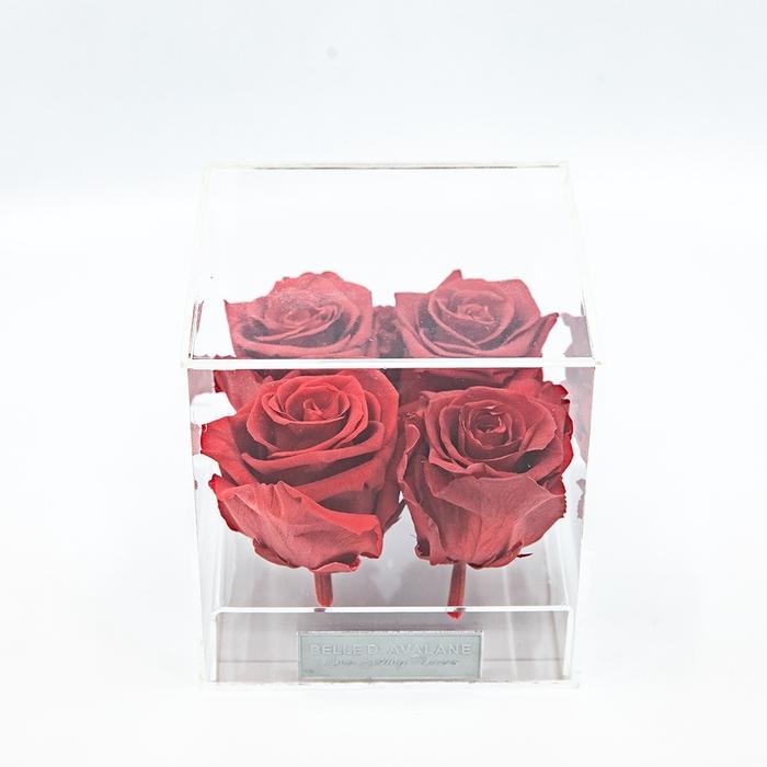 <h4>Plexi 12.5cm rode rozen</h4>