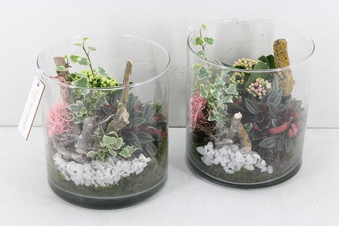<h4>arr. MB - Cilinder glas 5inh - roze/wit</h4>