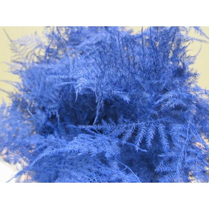 <h4>Asp Extra Veer Blauw</h4>