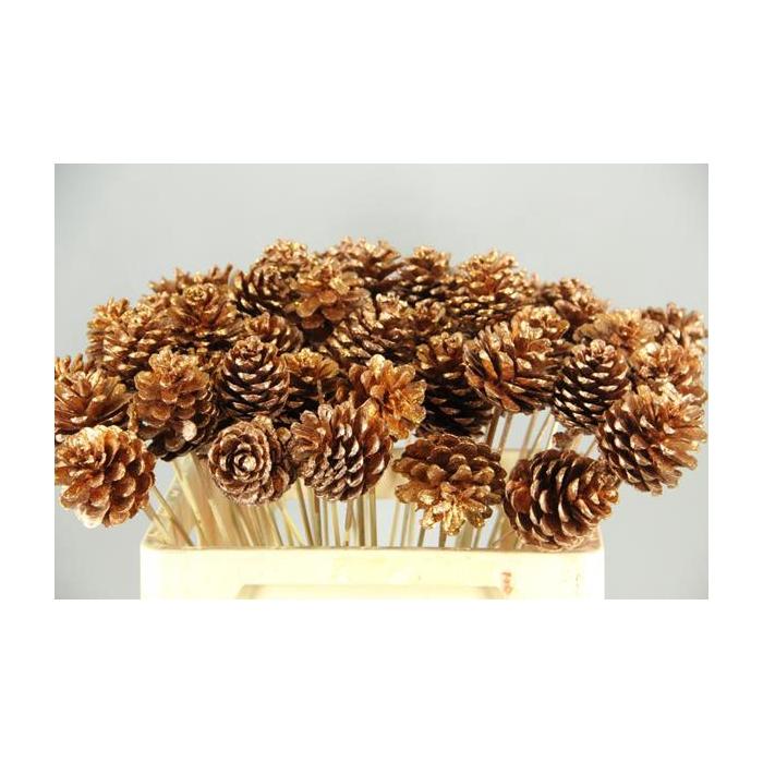 <h4>Stick Pine Cone Copper+glitter</h4>