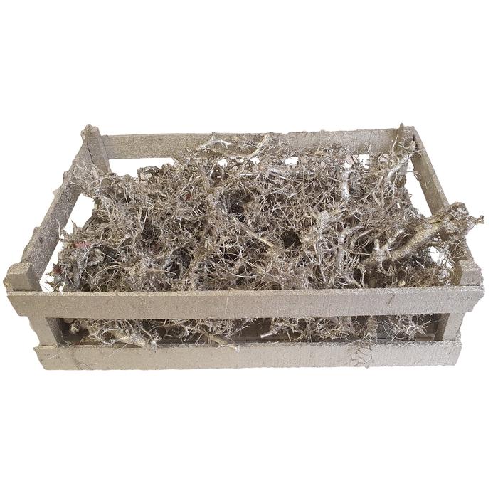 <h4>Bonsai branches in box (60-39-18) Platina</h4>