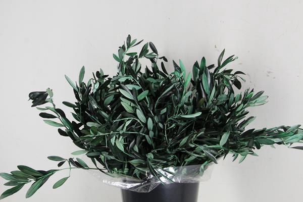 <h4>Pf Leafs Olive Bs(150gr)</h4>