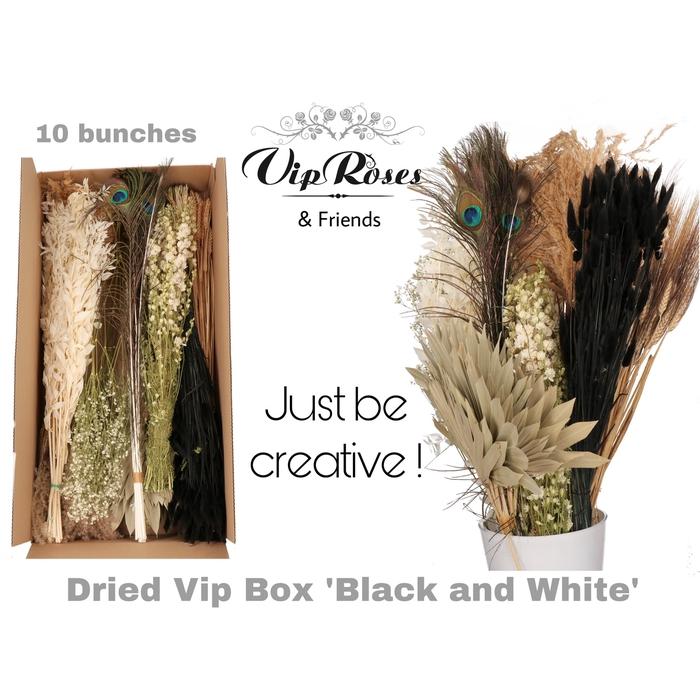 <h4>DRIED VIP BOX BLACK & WHITE</h4>
