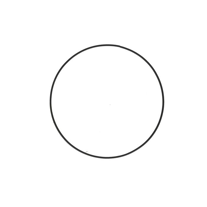 <h4>Bloemisterij Ijzeren ring d20cm x48</h4>