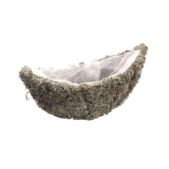 <h4>Planter Grey moss Oval  40cm B14cm Naturel</h4>