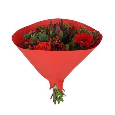 <h4>Houss 35x35cm Angelo 70gr kraft blanc rouge</h4>