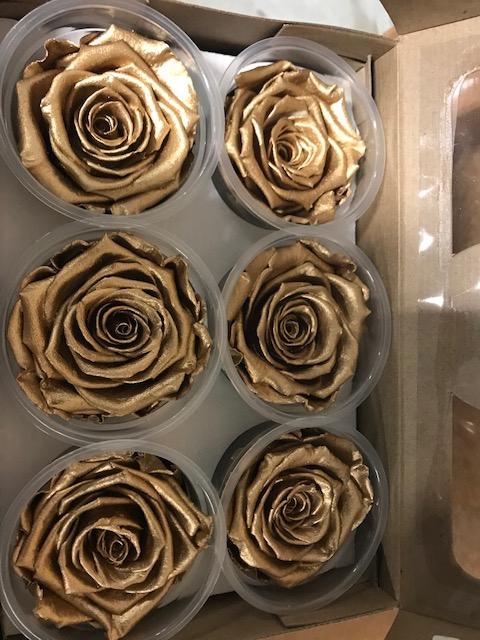 <h4>Rose XL Metal goud</h4>