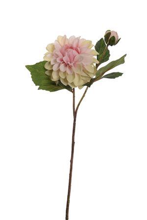 <h4>Dahlia sprayx2 Uldwyna 56cm grn/pnk</h4>