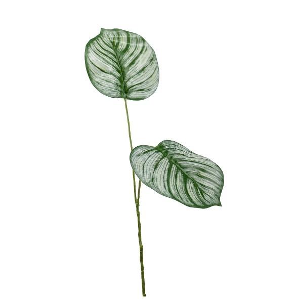 <h4>Silk Calathea leaf 50cm</h4>
