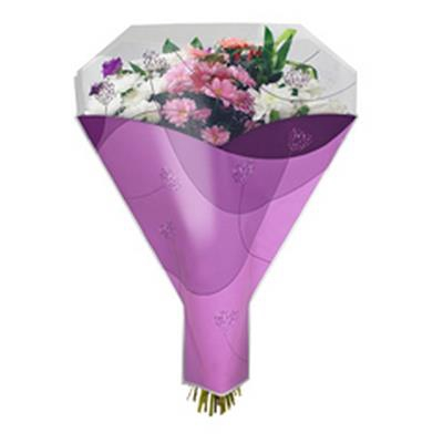 <h4>Housses 52x35x10cm OPP40 Sense violet</h4>
