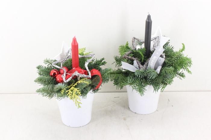 <h4>arr.. Kerst PL - Ker. bloempot wit mix</h4>