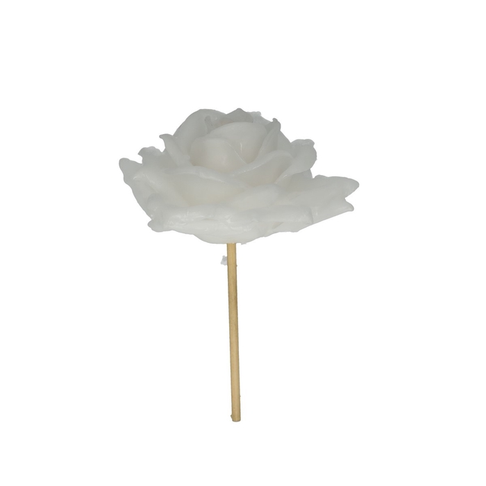 <h4>Christmas sticks 10cm Wax rose d10cm</h4>