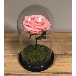 Stolp d12x20h XL roze