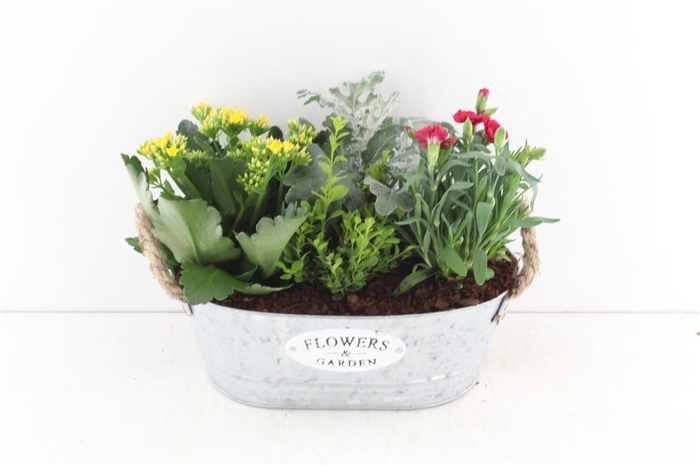 <h4>Arr.. Outdoor Nve - Zink Flowers&ga</h4>